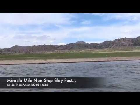 Miracle mile fly fishing nonstop hook ups doubles for Miracle mile fishing