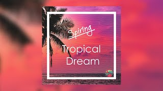 Spiring - Tropical Dream