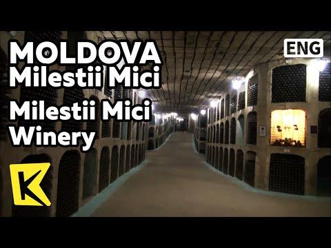 【K】Moldova Travel-Milestii Mici[몰도바 여행-밀레스티 미치]밀레스티 미치 와이너리/Wine/Individual cellar/Granite mine