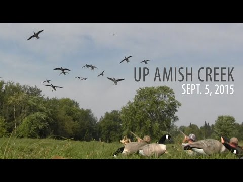 Up Amish Creek - Goose Hunt With White Rock Decoys