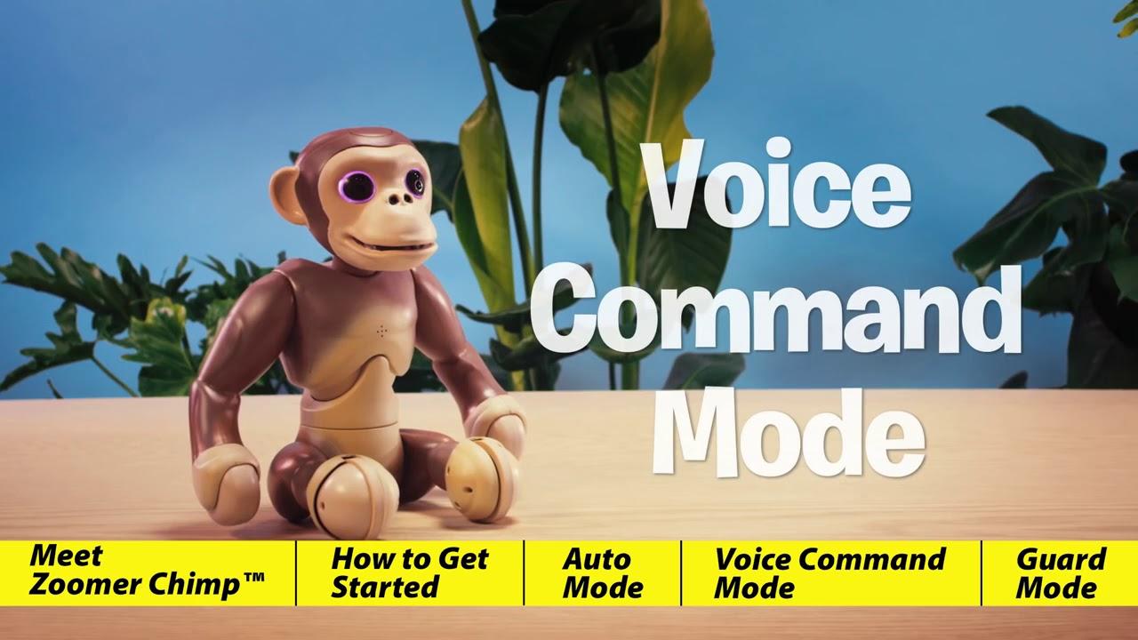 Zoomer Chimp Best Price Youtube