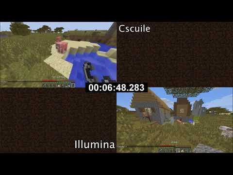 Minecraft Any% Random Seed Glitchless 2 Player Co-op in 28:13 with Cscuile