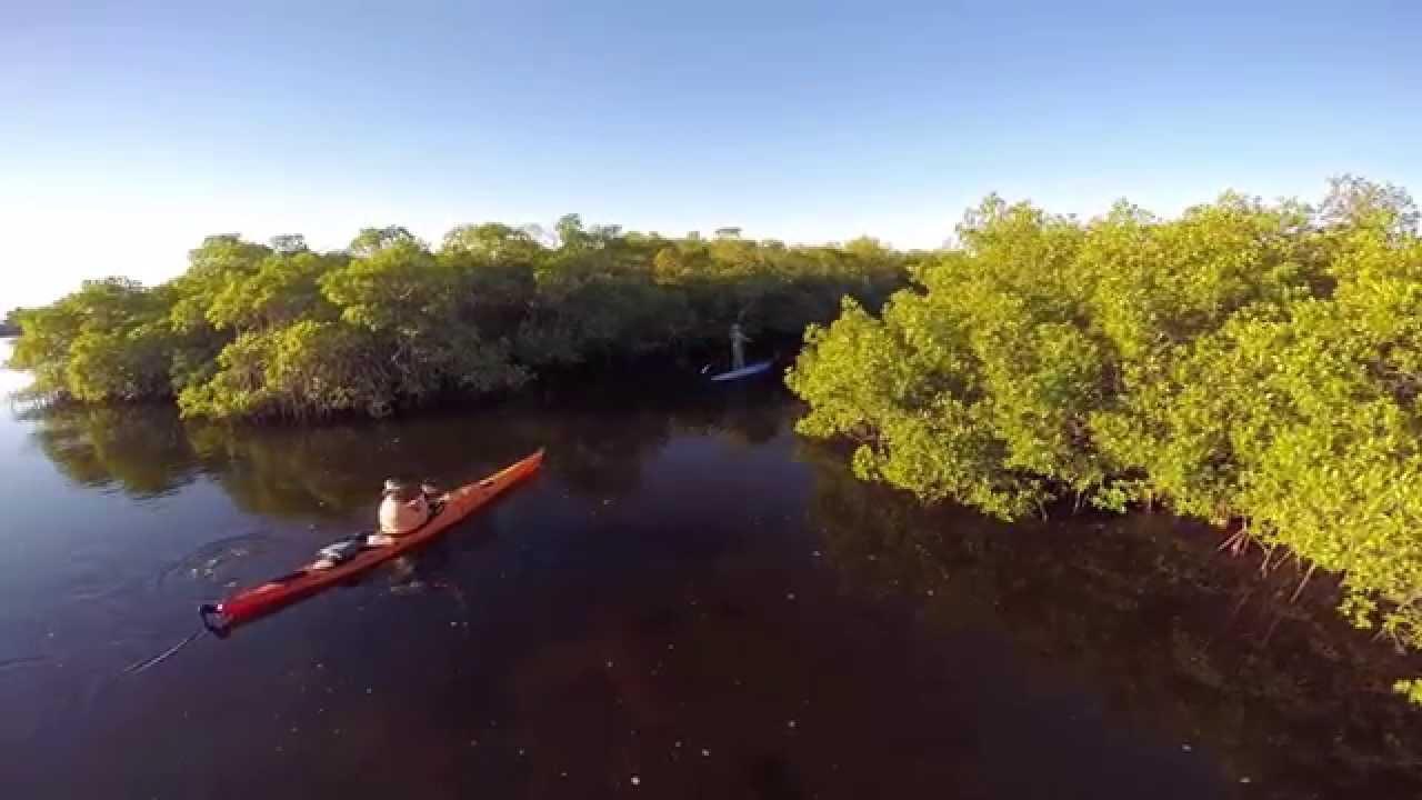 Kayaking | Kayak Rentals | Kayak Fishing In Cape Coral