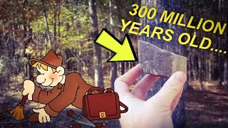 FOUND 300 MILLION YEAR OLD FOSSILS | FOSSIL HUNTING | PETRIFIED TREES