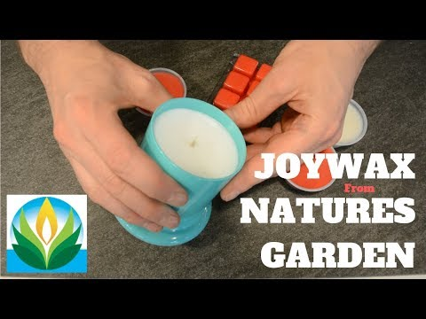 Testing and reviewing Joywax from Nature's Garden