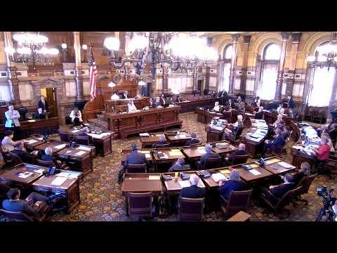 Senate Special Session Live HD - 6/4/2020