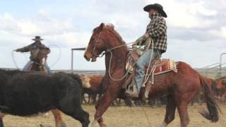 Warner Valley:  Cowboys and Ranchers