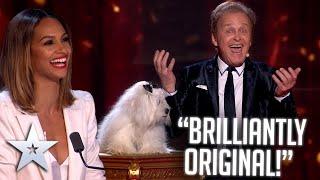 Marc Métral's INCREDIBLE talking dog! | Live Shows | BGT Series 9
