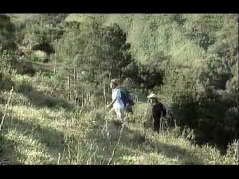filme a travessia da serra que chora gratis