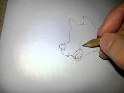 Wie Malt Man Einen Wolf