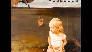 Watch Rosebuds Without A Focus video