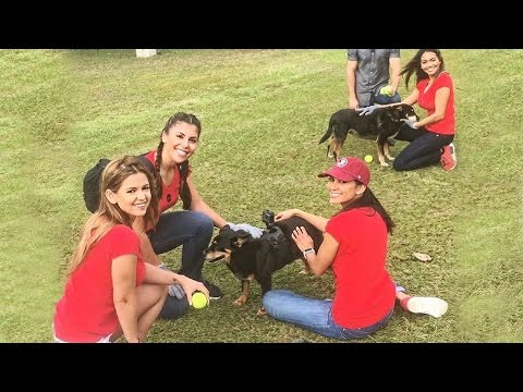 Rescue Dogs Play with Miami Model Citizens!  Meet Jake & Jill from Born Free Pet Shelter