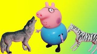 Семья Свинке Пеппы поехали в Зоопарк. Игровой мультик для детей!(В этом видео Семья Свинке Пеппы поехали в Зоопарк. Они увидели множество животных. Там были Волки, тигры,..., 2016-03-25T08:59:51.000Z)