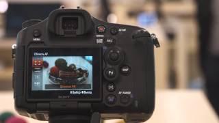 Настройка области AF в в фотокамерах SONY Alpha. Модели SLT, DSLR.