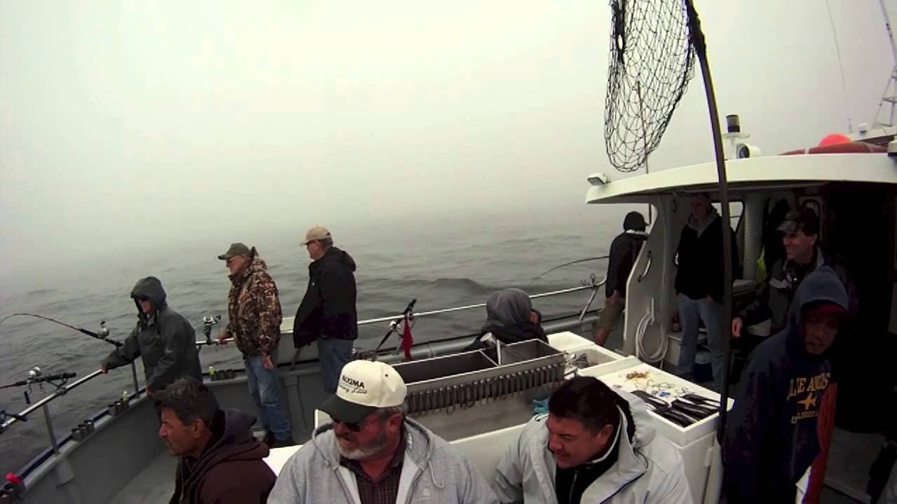 San Francisco Bay Area Salmon Fishing Youtube