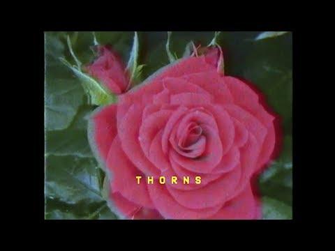 Bonnie McKee - Thorns (Lyric Video)