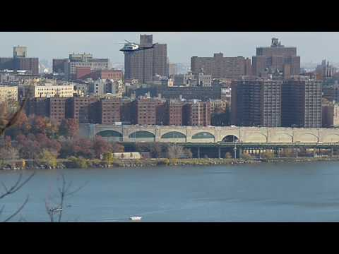 Humpback Whales in NYC Hudson River 11/19/16