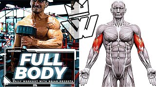 PERFECT FULL BODY Workout - MUSCLE GAIN!!