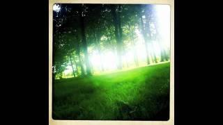 Kate Wax - Beetles and Spider (Ellen Allien & Apparat Remix).m4v