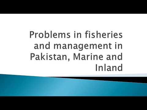 Problems In Fisheries And Management In Pakistan, Marine And Inland