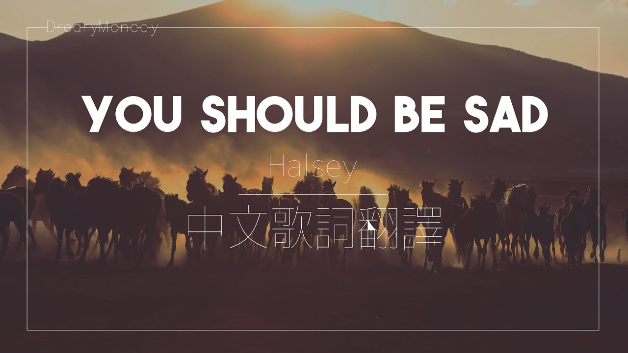 Halsey - You Should Be Sad|我不會再負責你的人生了|中文歌詞翻譯字幕 - YouTube