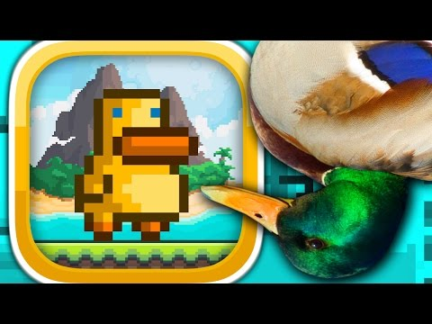 GRAVITY DUCK ISLANDS (iPhone Gameplay Video)