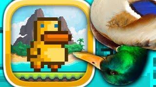GRAVITY DUCK ISLANDS (iPhone Gameplay Video)