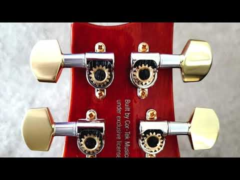 My Latest Guitar Project, Upgraded Tuners, Pickup Rings And Knobs