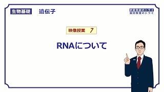 【生物基礎】 遺伝子7 RNAについて (13分)