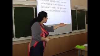 Урок русского языка Ширяевой Е.В.