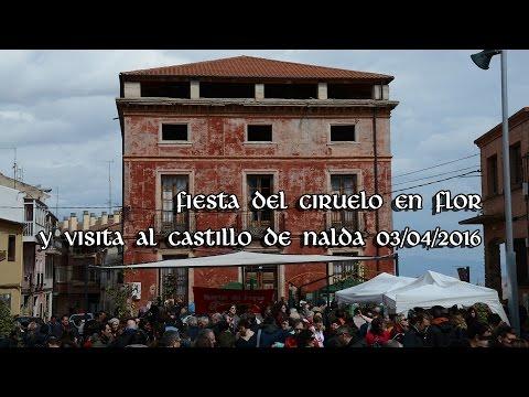 Fiesta del ciruelo en flor y visita al Castillo de Nalda 2016