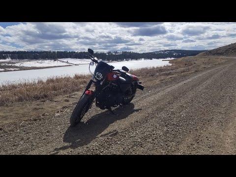 Harley Davidson Iron 883. Spring Time.