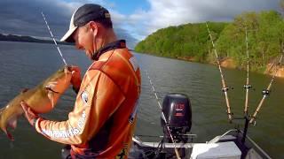 Start A Day Catfishing!!