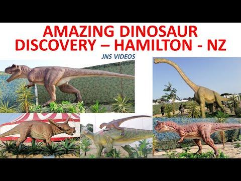Amazing Dinosaur Discovery | Hamilton NZ | 2020