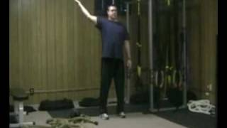 posture exercise and the trx y shoulder fly