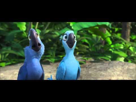Голубые попугаи мультфильм
