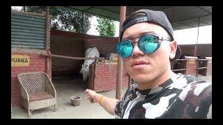 HORSE RIDING |NEPAL |2018