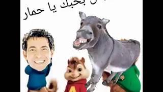 مهرجان بحبك يا حمار 2020