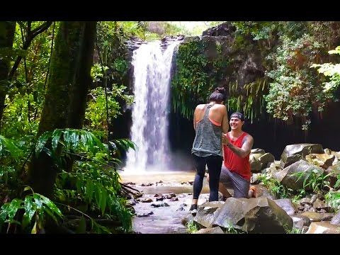 Maui • SECRET WATERFALL proposal