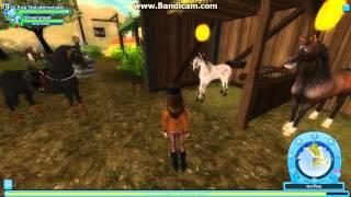 quelle chevaux pour les non star rider