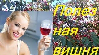 видео Вишневый сок: польза и вред, состав и калорийность