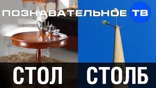 Почему называется СТОЛ и СТОЛБ? (Познавательное ТВ, Артём Войтенков)