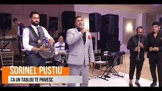 Sorinel Pustiu - Ca un tablou te privesc LIVE 2018