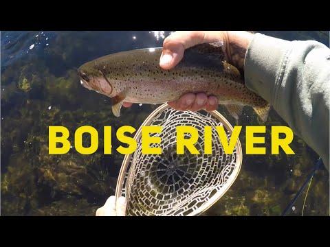 South Fork Boise River Fly Fishing