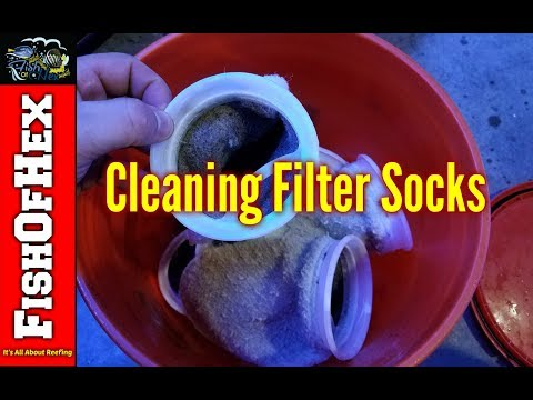 Cleaning Aquarium Filter Socks The Easy Way