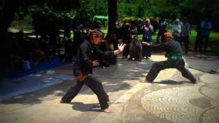 Video SILAT PADJADJARAN ( di Taman Kencana, Pakuan-Bogor ) download MP3, 3GP, MP4, WEBM, AVI, FLV Mei 2018