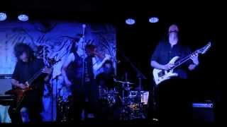 "Ally the Fiddle ""The Crumbling Autumn"", live"