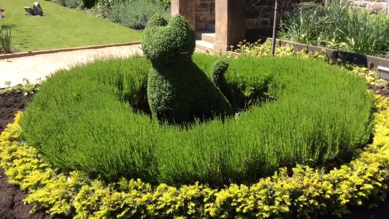Garden Topiary Designs   Cat Shaped Topiary For Garden Decoration #topiary # Gardening