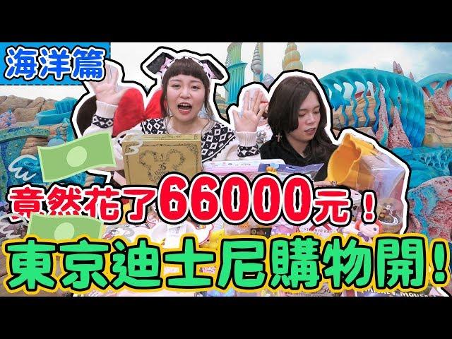 【購物開箱】我在東京迪士尼竟然花了66000元! 你們好奇的價格我全部記錄啦!(上集)DISNEY SEA & DISNEY LAND |可可酒精