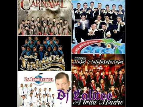 La Arrolladora, Banda Ms, La Carnaval, La Trakalosa Mix